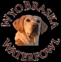 Waterfowl Hunting In Wyoming Wyobraska Waterfowl